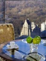 Ty Warner Penthouse suite, Four Seasons Hotel, New York, USA image title