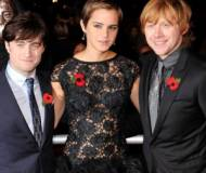Harry Potter And The Deathly Hallows: Part 1 premiere