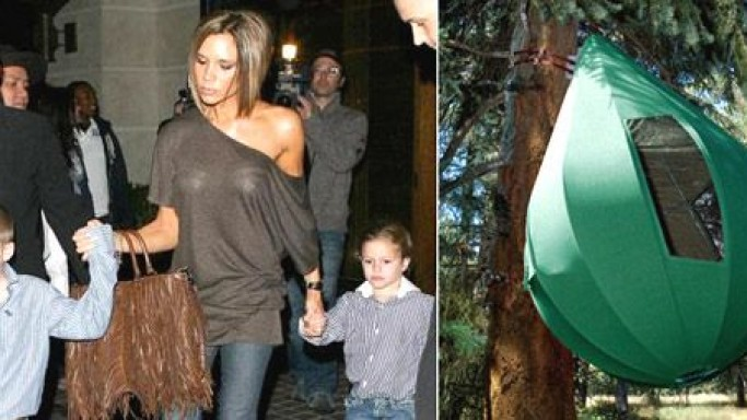 Posh splashes out $50,000 on a Treehouse for her boys