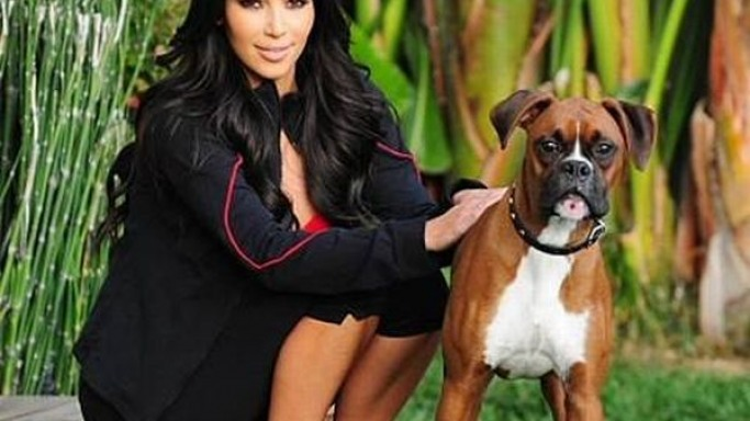 Photo of Kim Kardashian & her Dog Rocky